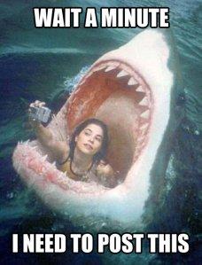 funny-girl-selfie-shark