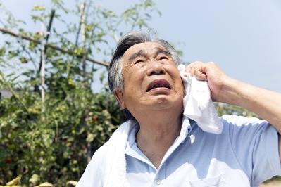 ElderlyHeatStrokeExhaustion